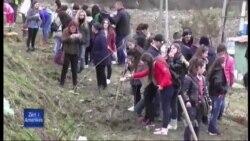 Shqipëri: Përmbytjet dhe mjedisi
