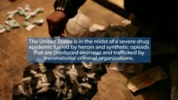 Addressing the Drug Epidemic