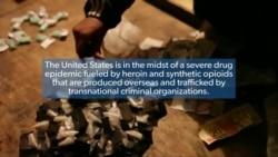 Addressing the Drug Epidemic
