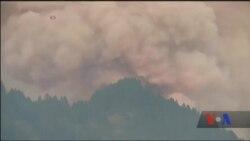 У Каліфорнії рекордна висока температура, що призвела до поширення лісових пожеж. Відео