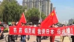 火墙内外: 反日保钓示威游行暴力化