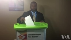 Zimbabwe Diaspora for Democracy Launches Vote Campaign