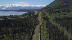 Trans-Alyaska neft kəmərinin 40-cı ildönümü qeyd edilir