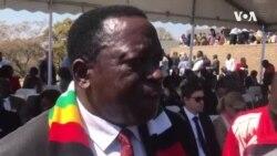 VaVictor Matemadanda Voshora Hurongwa Hwekuratidzira Hurikurongwa neBato reMDC neChishanu