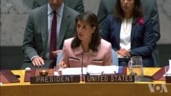 美国驻联合国大使黑利年底卸任