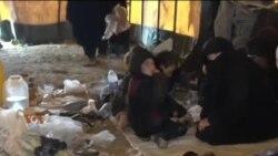 شام کے الہول کیمپ کی ابتر صورت حال