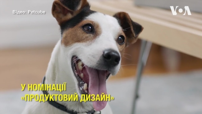 Пристрій українського стартапу Petcube відзначили престижною нагородою. Відео