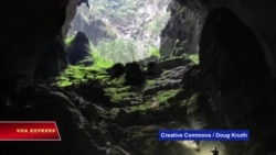 Việt Nam phát hiện thêm 58 hang động mới tại Phong Nha