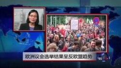 VOA连线:欧洲议会选举结果呈反欧盟趋势