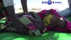"""Manchetes Africanas 9 Setembro: Na África do Sul continua a """"luta"""" do ANC contra Zuma"""