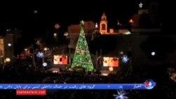 درخت کریسمس در بیتلحم چراغانی شد