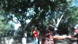 Հայկական պիկնիկ (դաշտահանդես) Կալիֆորնիայի Սանտա Կլարիտա քաղաքում
