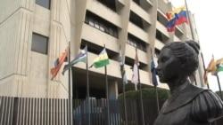 "Venezuela: Tribunal Supremo avala ""Constituyente"""