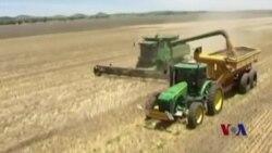 在线虚拟教程传递农业新技术