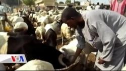 Müslümanlar Kurban Bayramını Kutluyor