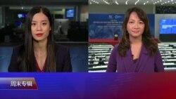 VOA连线(张佩芝岘港报道):APEC岘港宣言;TPP变CPTPP;叙利亚声明