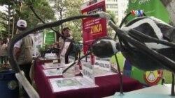 OMS propone estrategia global que costara millones contra el Zika