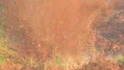 ONU y Colombia buscan erradicar minas antipersonales