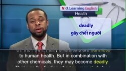 Anh ngữ đặc biệt: Harmless Chemicals Cancer (VOA)