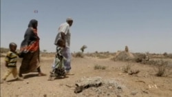 Famine Threatens Parts of Sub-Saharan Africa