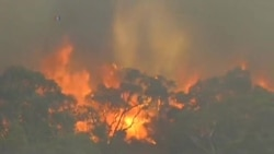 AUSTRAILIA FIRES CNPK