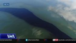 Ndotja nga nafta në ishullin Mauritius
