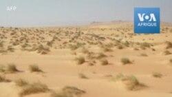 Images impressionnantes de l'écotourisme dans le Sahara mauritanien