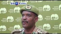 Idara ya wanayama pori Kenya inaeleza kuwa idadi ya ndovu imeongezeka kutokana na hatua za kukabiliana na ujangili.