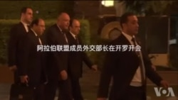 阿拉伯联盟外交部长星期六在开罗举行会议