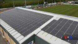 Зелені, тому що еко: Як футбольний клуб у Великобританії вболіває за планету Земля. Відео