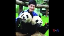 """专访""""全球熊猫爱心大使""""黄晓明"""