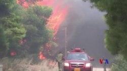 希臘雅典附近山火造成至少74人死亡