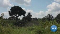 Muri #Tanzaniya Haragurishwa Umuti Uvugwaho Kuvura COVID19