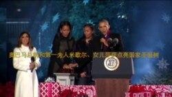 奥巴马总统点亮国家圣诞树