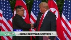 专家视点 (何天睦):川金会后,朝鲜半岛未来局势如何?