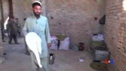 2015-11-01 美國之音視頻新聞: 阿富汗東部針對伊斯蘭國組織的起義尚未開始