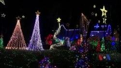 Неймовірні різдвяні прикраси у передмісті Вашингтона. Відео