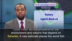 Phát âm chuẩn - Anh ngữ đặc biệt: Underreported Fishing (VOA)