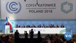 Climate Talks Open in Poland on Somber Note