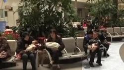 美专家:中国新禽流感病毒严重前所未有
