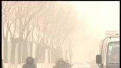 VOA卫视(2013年1月15日 第一小时节目)