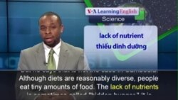 Anh ngữ đặc biệt: Cambodia Finds Success in Improving Nutrition (VOA)