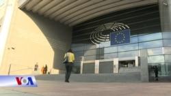 Nghị viên EU kêu gọi ngưng phê chuẩn EVFTA với VN vì nhân quyền