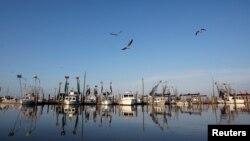 Idle shrimp boats float at the docks of Joshua's Marina in Buras, Louisiana, May 17, 2010.