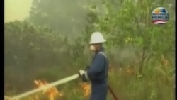 新加坡總理:來自印尼的霧霾將影響數星期