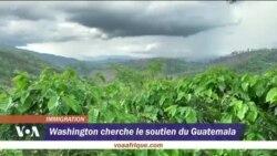 Crise migratoire : Washington cherche le soutien du Guatemala