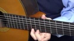 Umjetnik za klasične i flamenko gitare