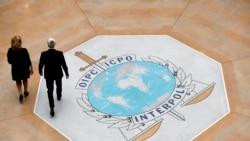 Interpol saisit 19 000 objets d'art volés et fait arrêter 101 personnes