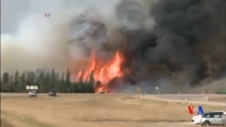 2016-05-09 美國之音視頻新聞: 加拿大扑救山火行動出現轉機