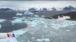 Antarktika Yeni Tehditlerle Karşı Karşıya